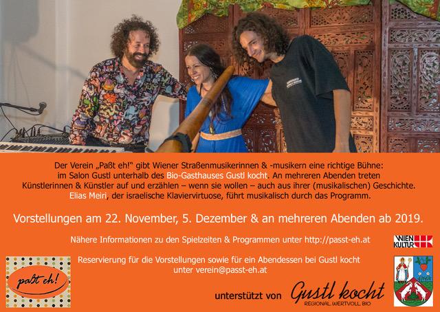 Wiener Straßenmusik im Salon Gustl 2